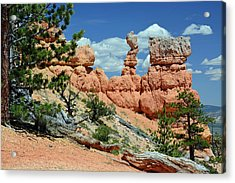 Acrylic Print featuring the photograph Stunning Bryce Canyon National Park Backcountry by Bruce Gourley
