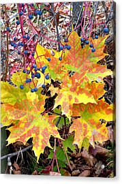 Stunning October Acrylic Print