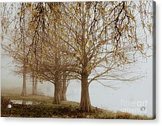 Acrylic Print featuring the photograph Sublime by Iris Greenwell