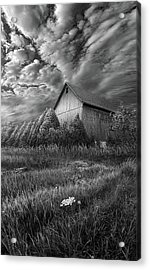 Sublimity Acrylic Print by Phil Koch