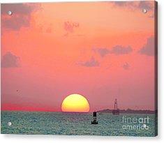 Submerge  Acrylic Print