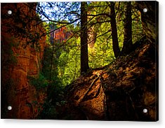 Subway Forest Acrylic Print by Chad Dutson