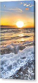Sudsy Vertical I Acrylic Print by Debra and Dave Vanderlaan