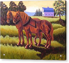 Suffolk Punch Day Is Done Acrylic Print