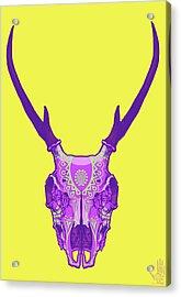 Sugar Deer Acrylic Print by Nelson Dedos Garcia