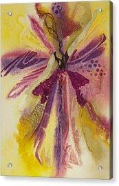 Sugar Plum Fairy Acrylic Print by Terry Honstead