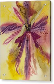 Sugar Plum Fairy Acrylic Print