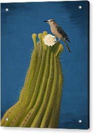 Sugaro Cactus And Cactus Wren Acrylic Print by Wally Hampton