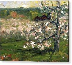 Sullivan's Orchard Acrylic Print