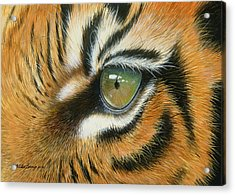 Sumatra Acrylic Print