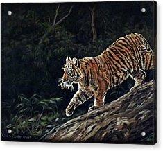 Sumatran Cub Acrylic Print