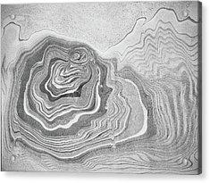 suminagashi No.5 Acrylic Print by Tom Druin