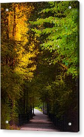 Summer And Fall Collide Acrylic Print