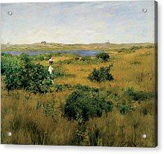Summer At Shinnecock Hills Acrylic Print by William Merritt Chase