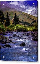 Acrylic Print featuring the photograph Summer At The Animas River by Ellen Heaverlo