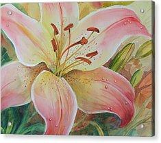 Summer Beauty Acrylic Print by Dianna Willman