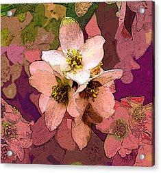 Summer Blossom Acrylic Print