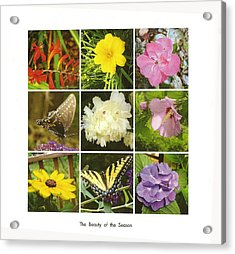 Summer Botanical Collage Acrylic Print by Margie Avellino