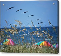Summer Breeze Acrylic Print by Adele Moscaritolo