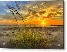 Summer Breezes Acrylic Print by Marvin Spates