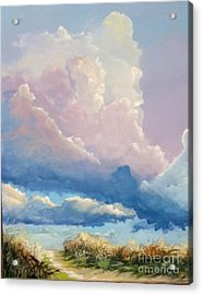 Summer Clouds Acrylic Print by John Wise