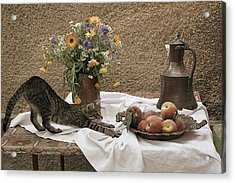 Summer Composition With Cat Acrylic Print by Floriana Barbu