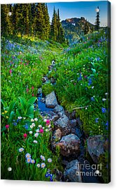 Summer Creek Acrylic Print by Inge Johnsson