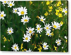 Acrylic Print featuring the digital art Summer Daisies by Julian Perry