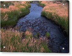 Summer Evening On Palouse River Acrylic Print by Jerry McCollum