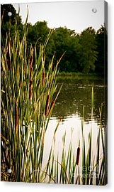 Summer Evening On The Pond Acrylic Print by Jim Raines