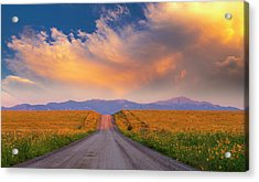 Acrylic Print featuring the photograph Summer Fantastic by Tim Reaves