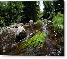 Summer Flow Of Water Near Rangeley Maine  -63322 Acrylic Print
