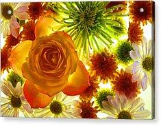 Summer Flowers Acrylic Print by Bobby Villapando