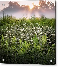 Summer Fog Acrylic Print