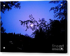 Summer Full Moon Acrylic Print by Garnett  Jaeger