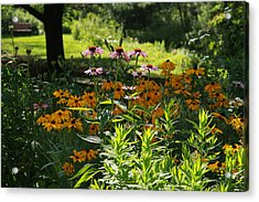 Summer Garden Acrylic Print by Yvonne Wright