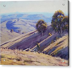 Summer Hillside, Mudgee Acrylic Print