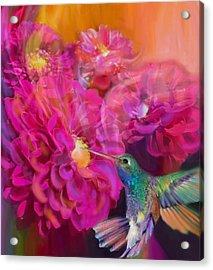 Summer In Full Bloom  Acrylic Print by Julianne  Ososke