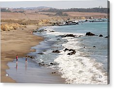 Acrylic Print featuring the photograph Summer In San Simeon by Art Block Collections