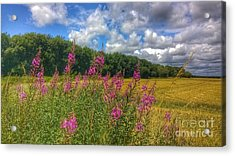 Summer In The Country Acrylic Print
