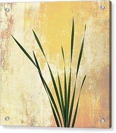 Acrylic Print featuring the photograph Summer Is Short 1 by Ari Salmela