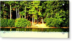 Summer Lake Acrylic Print by Aron Chervin