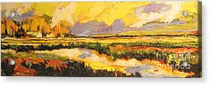 Acrylic Print featuring the painting Summer Light by Debora Cardaci