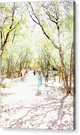 Acrylic Print featuring the photograph Summer Light Provence by Rasma Bertz