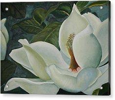 Summer Magnolia Acrylic Print