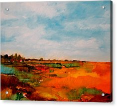 Summer Midday Acrylic Print by Dan  Boylan