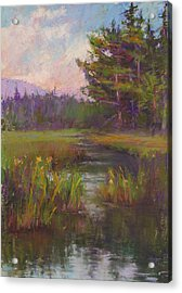 Summer Morning Beaver Marsh Acrylic Print