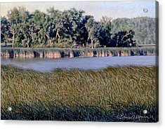 Summer Morning On The Slough Acrylic Print by Bruce Morrison