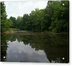 Summer Pond Acrylic Print by Robert Clayton