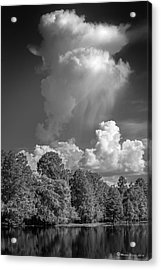 Summer Pop Up Acrylic Print by Marvin Spates